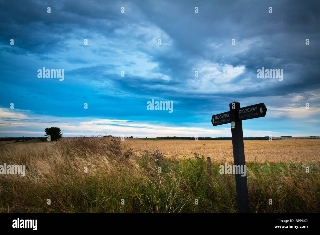 Ridgeway signpost on the downs at West Ilsley on the Oxfordshire and Berkshire border, Uk Stock Photo