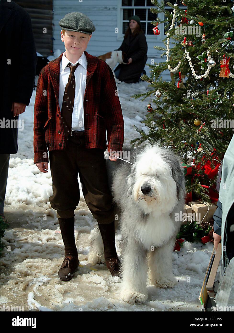 12 Dogs Of Christmas.Adam Hicks Dog The 12 Dogs Of Christmas 2005 Stock Photo