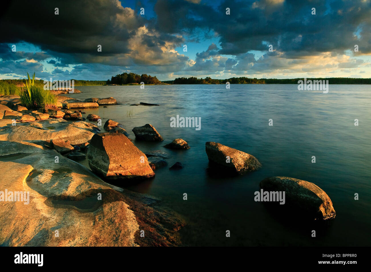 Summer evening light at the lakeshore of the small island Brattholmen in the lake Vansjø, Råde kommune, - Stock Image
