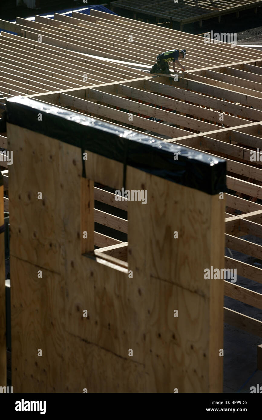 The timber and LVL laminated veneer lumber frame for NMIT's new Arts and Media building under construction, - Stock Image