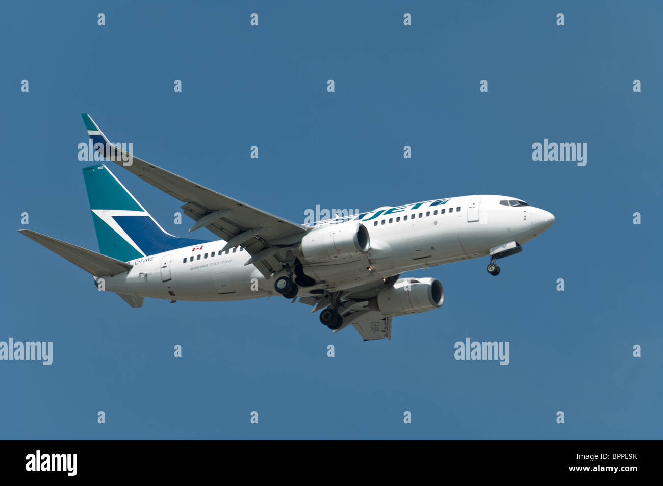 ABoeing 737-700 wearing the WestJet airlines colours makes a final approach to a runway at Lester B. Pearson International - Stock Image