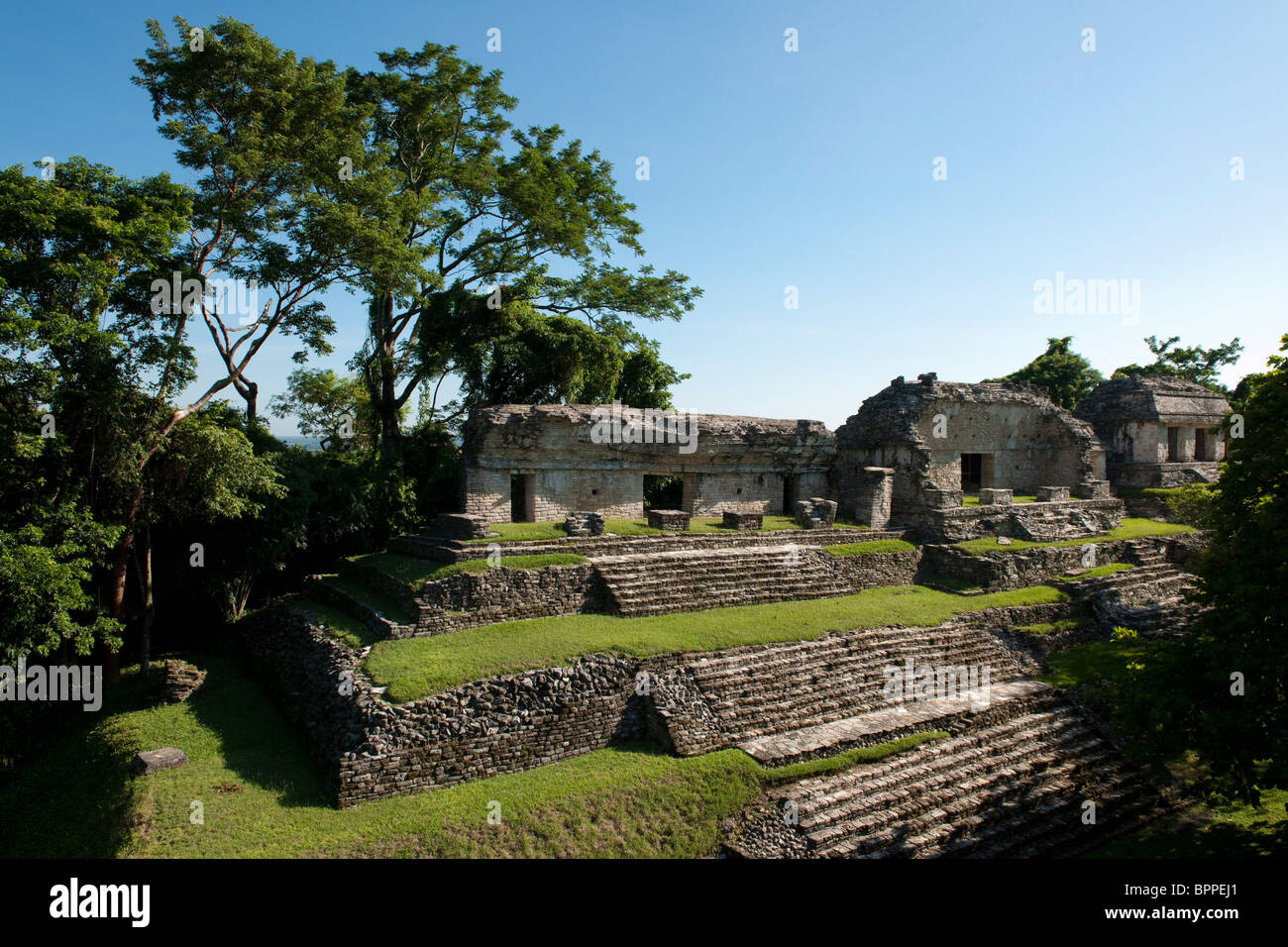 North Group, Maya ruins of Palenque, Mexico - Stock Image