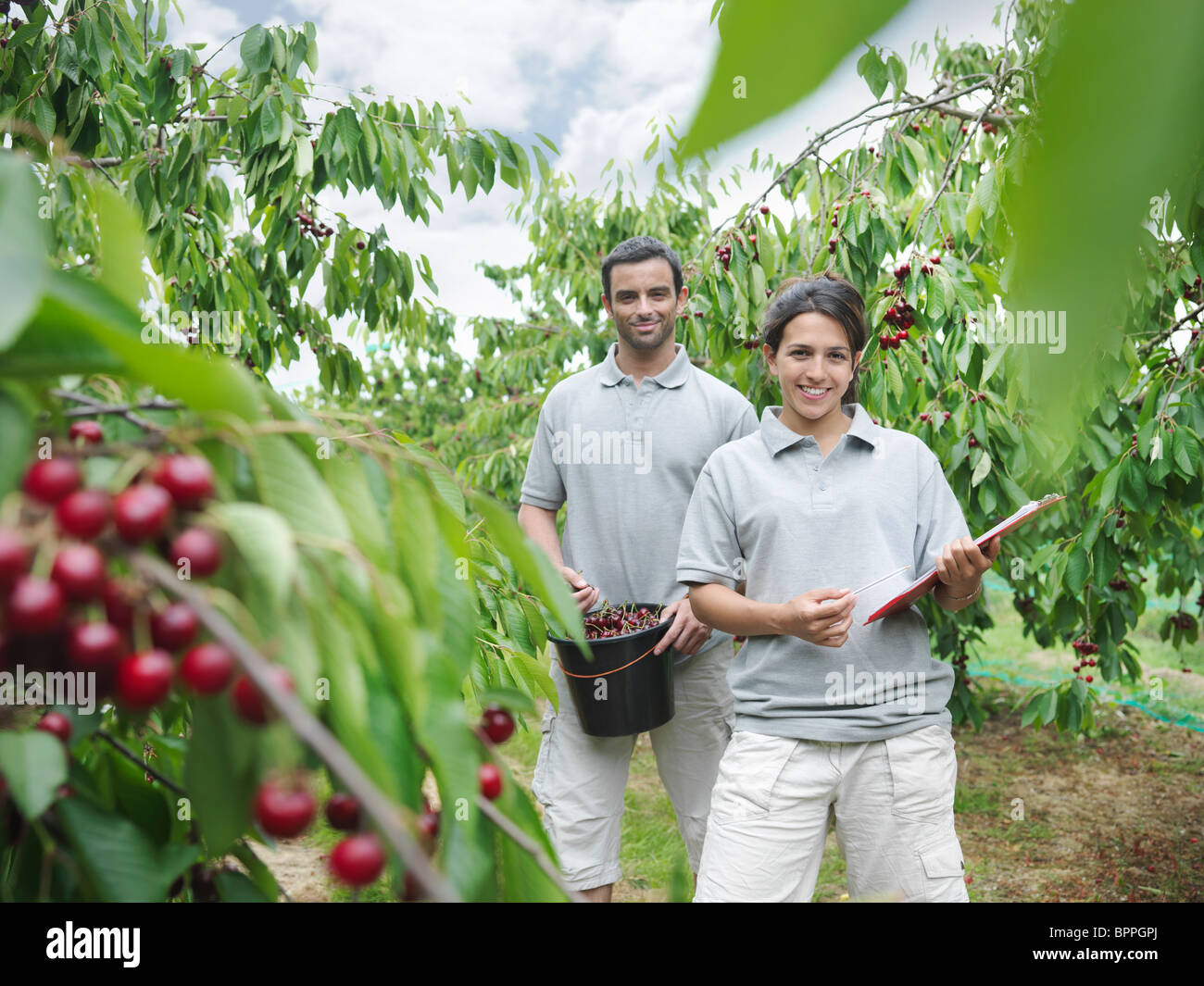 Man and woman posing in cherry orchard - Stock Image