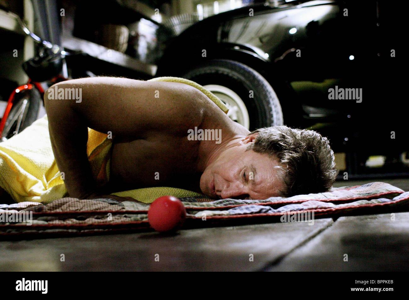 TIM ALLEN THE SHAGGY DOG (2006) - Stock Image