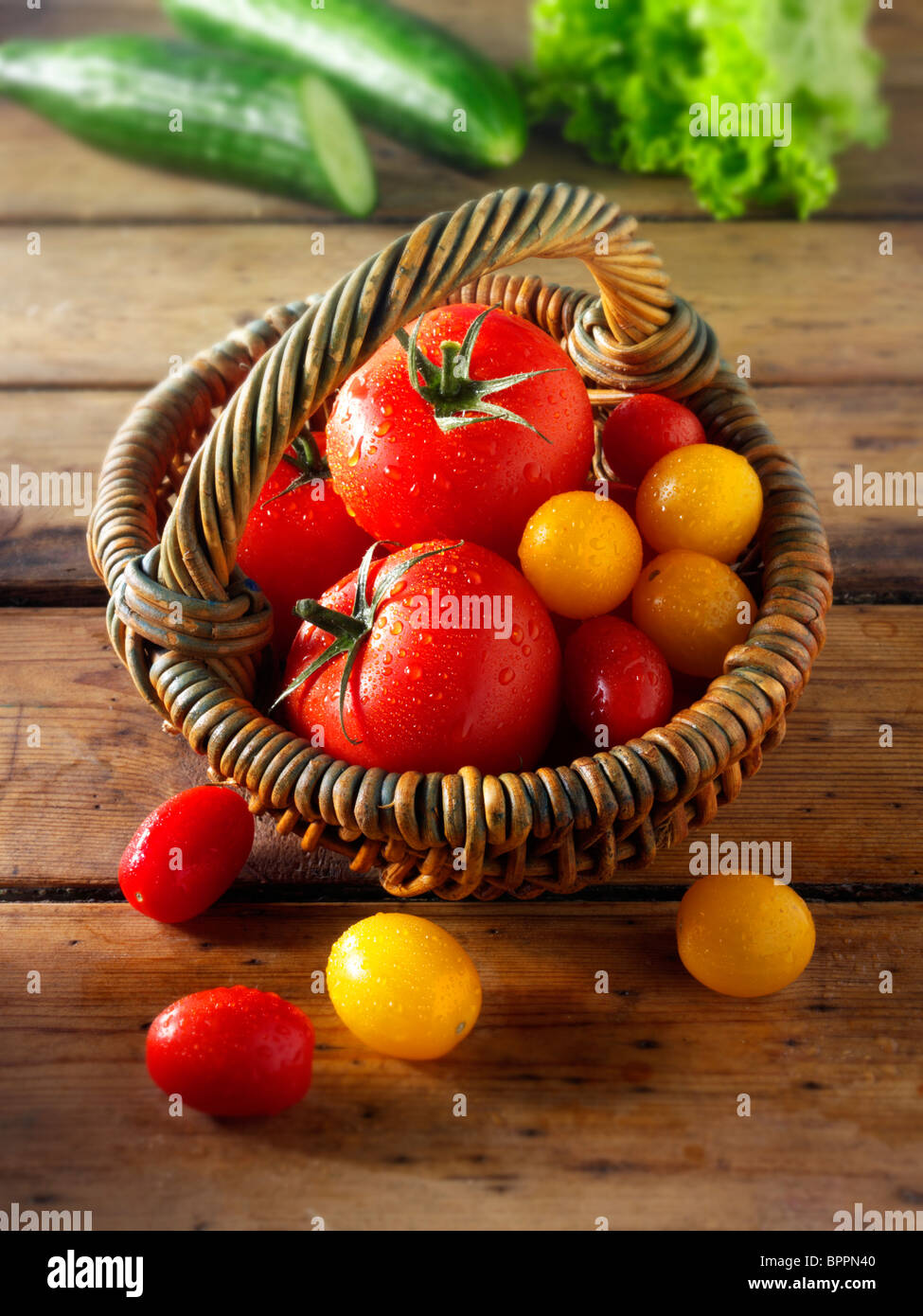Mixed tomatoes photos, pictures & images Stock Photo