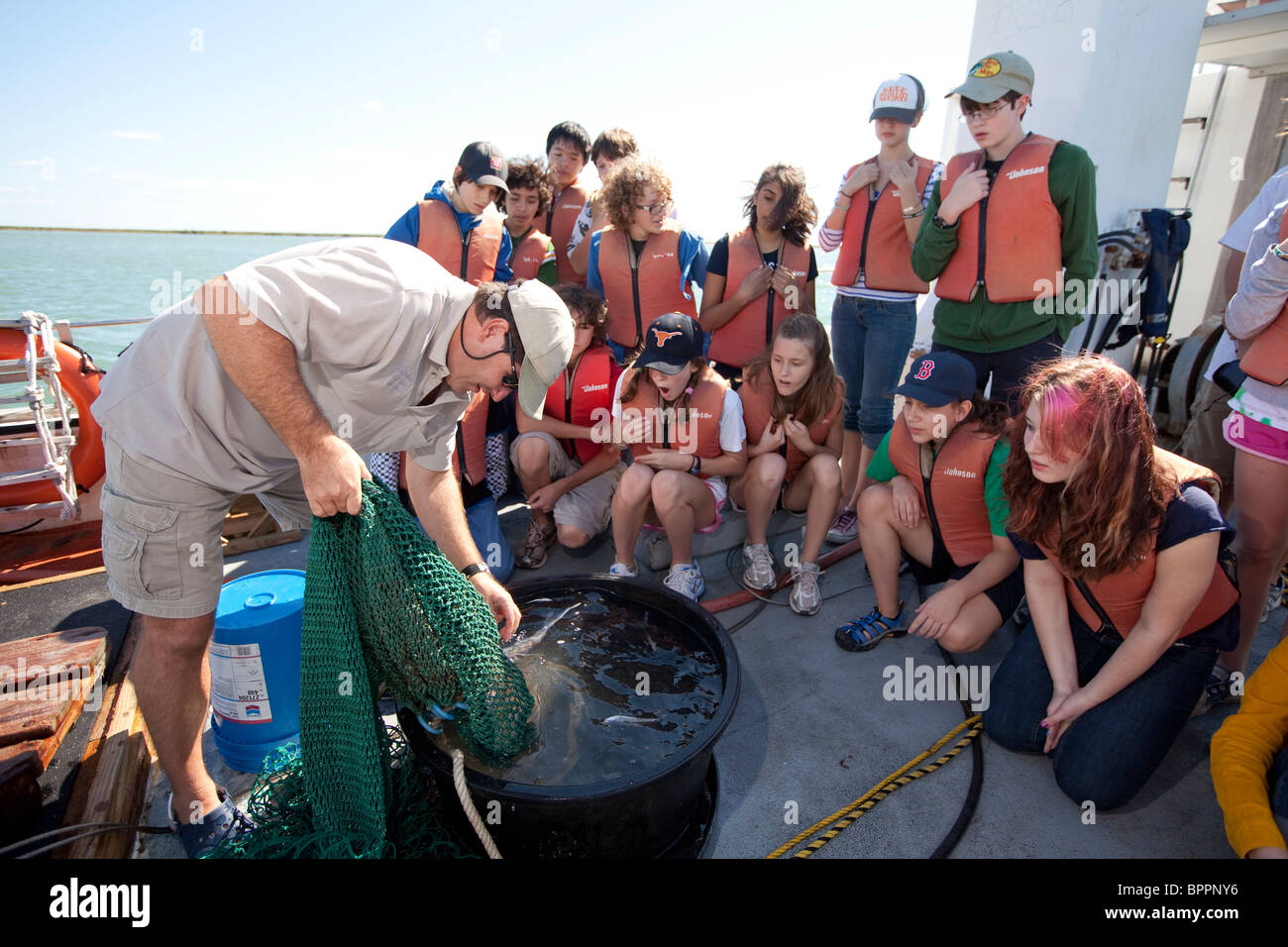Marine biologist puts catfish in a tank to show middle school students on board a research vessel during class field - Stock Image