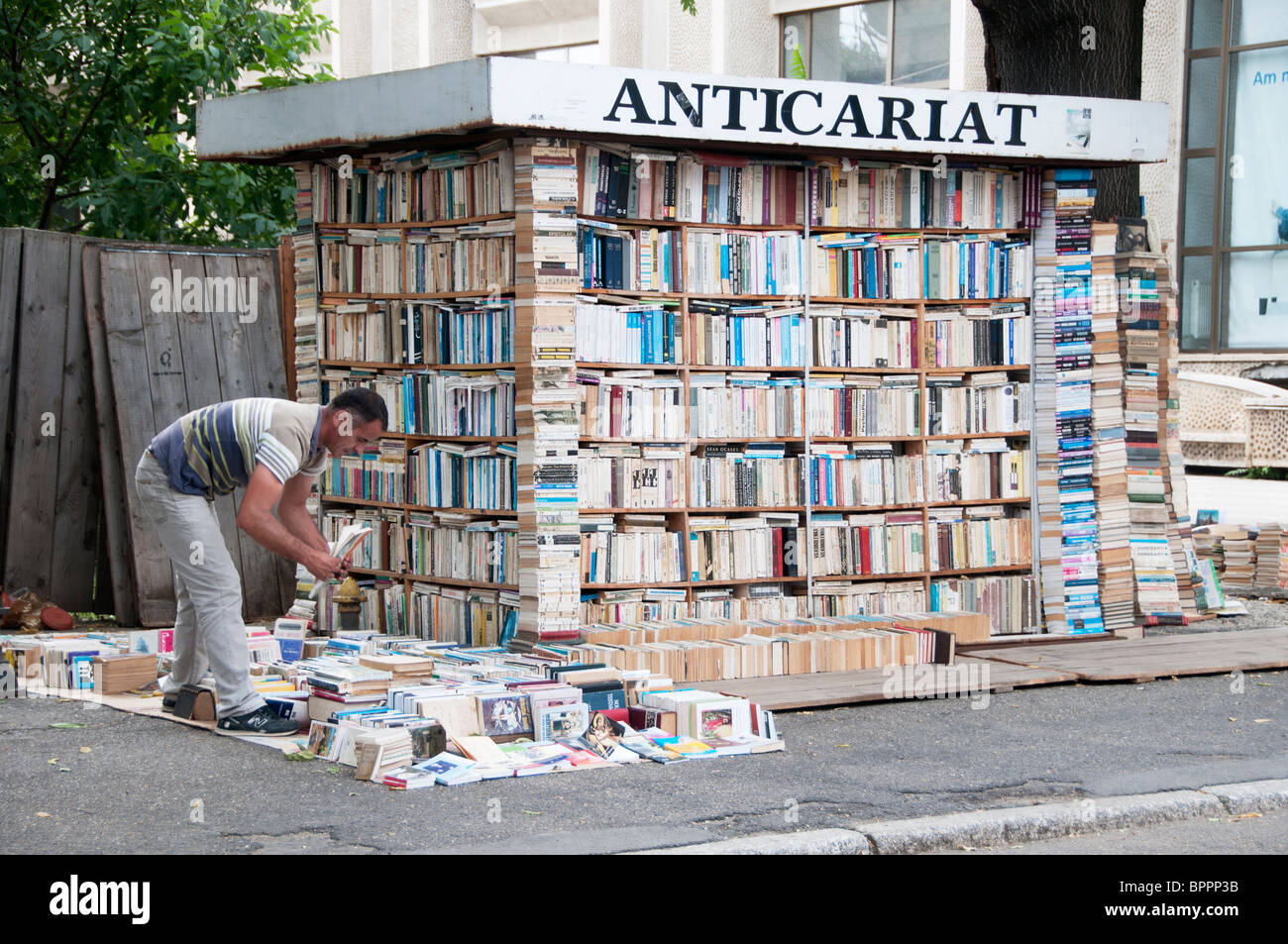 Second hand bookseller with piles of books he is sorting - Stock Image