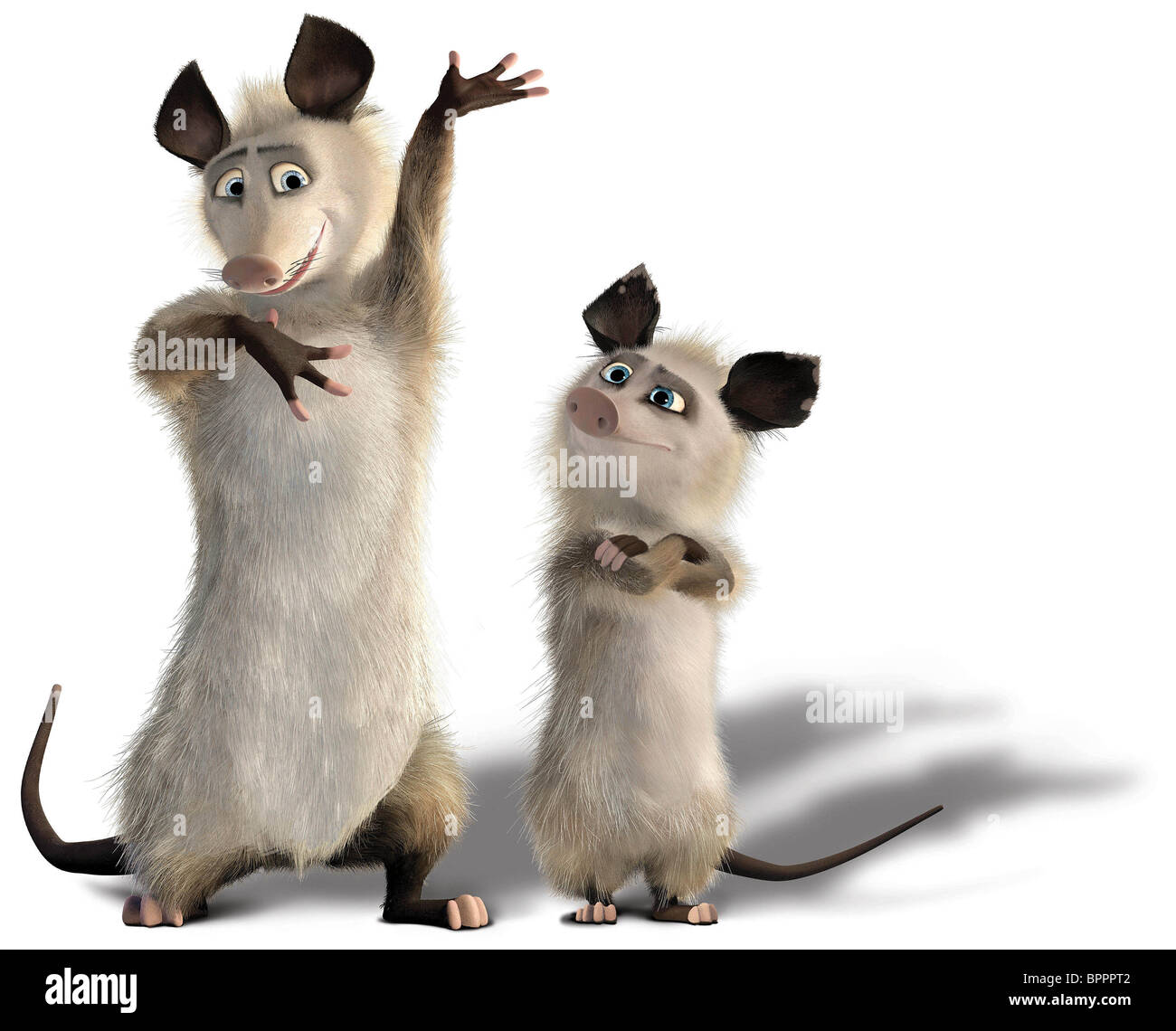 OZZIE & HEATHER OVER THE HEDGE (2006) - Stock Image