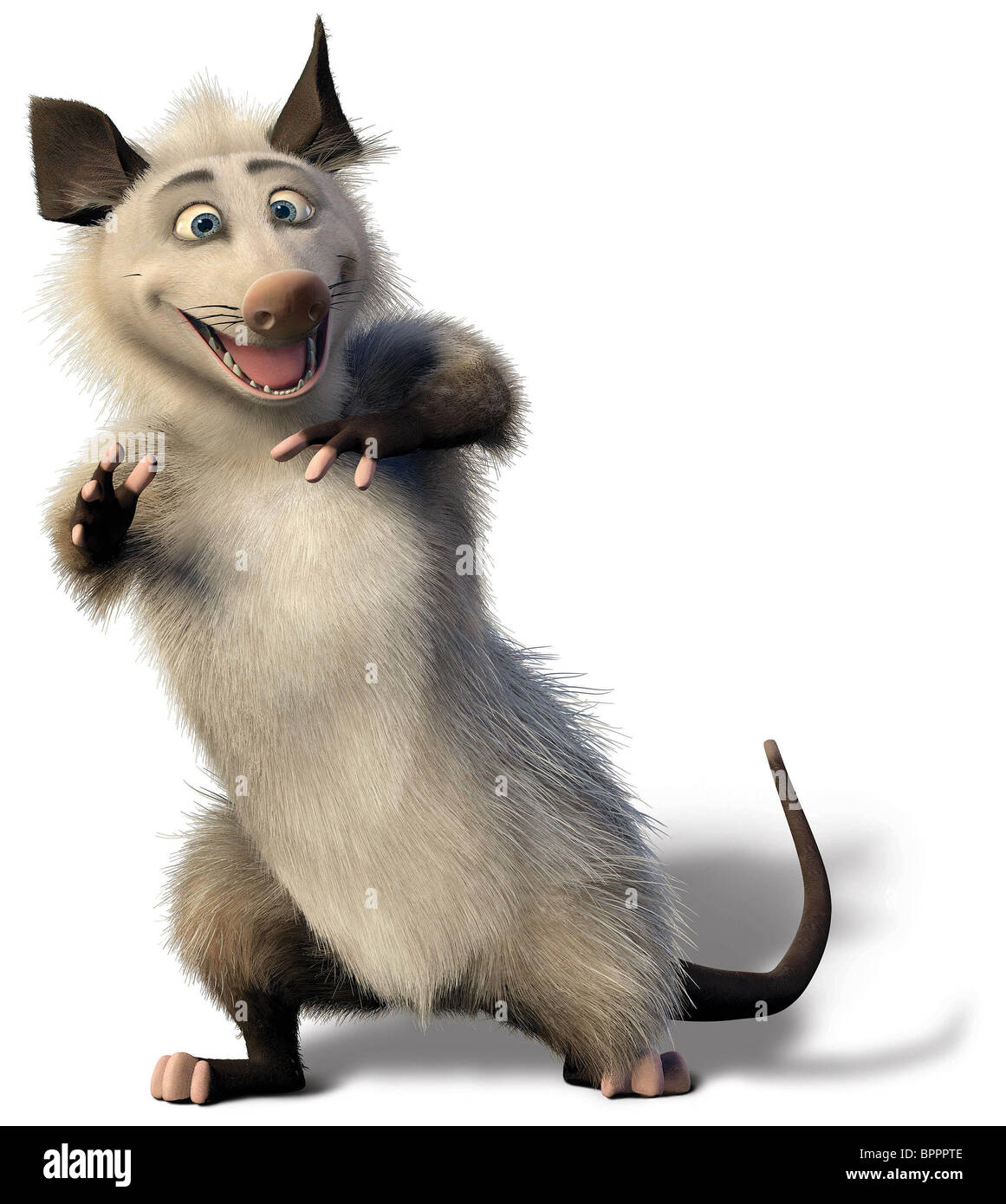 OZZIE OVER THE HEDGE (2006) - Stock Image