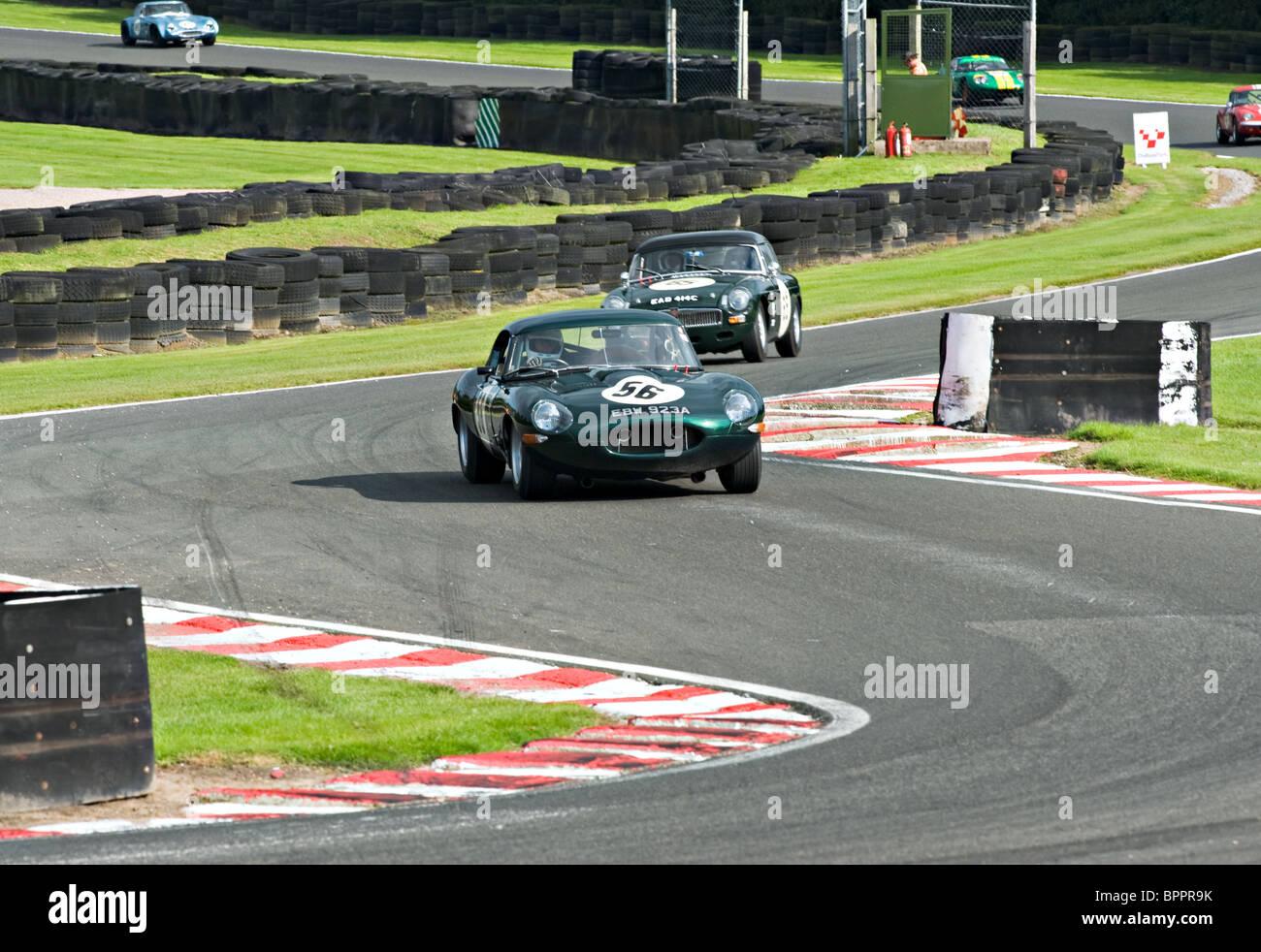 Show Me Your Racing Stripes Black Mg T Moto Et Voitures