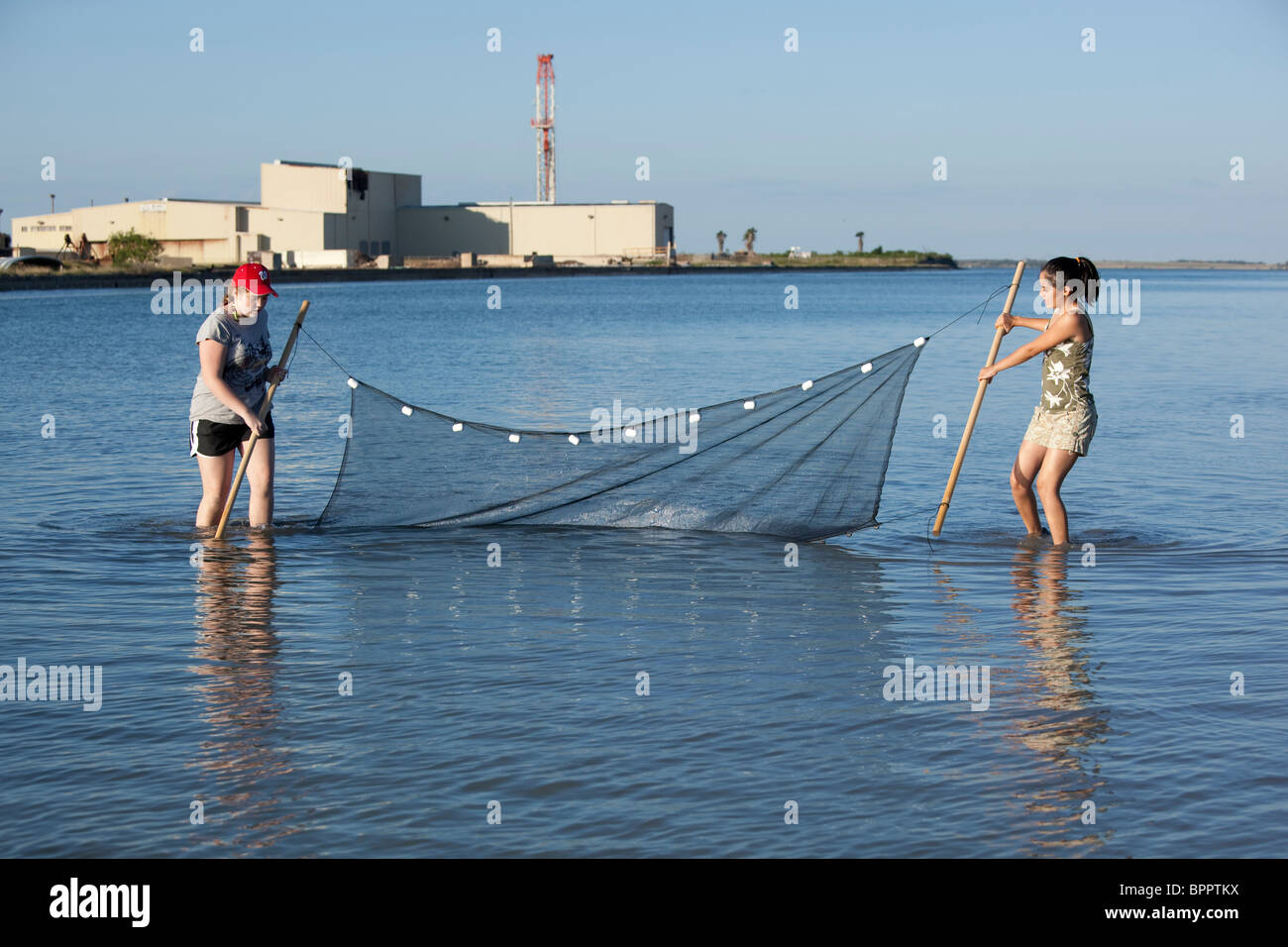Middle school girls drag seine net to collect saltwater specimens during marine biology class field trip to Corpus - Stock Image