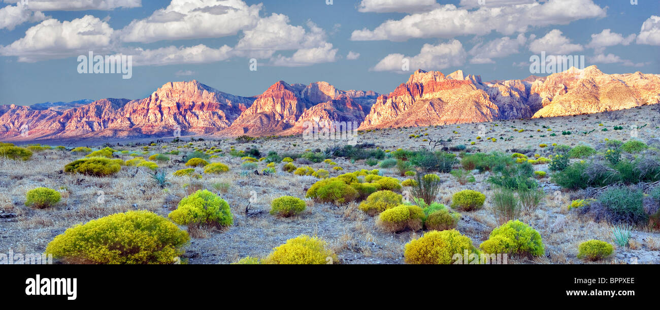 Rabbitbrush and rock formations in Red Rock Canyon National Conservation Area, Nevada. Sky has been added. - Stock Image