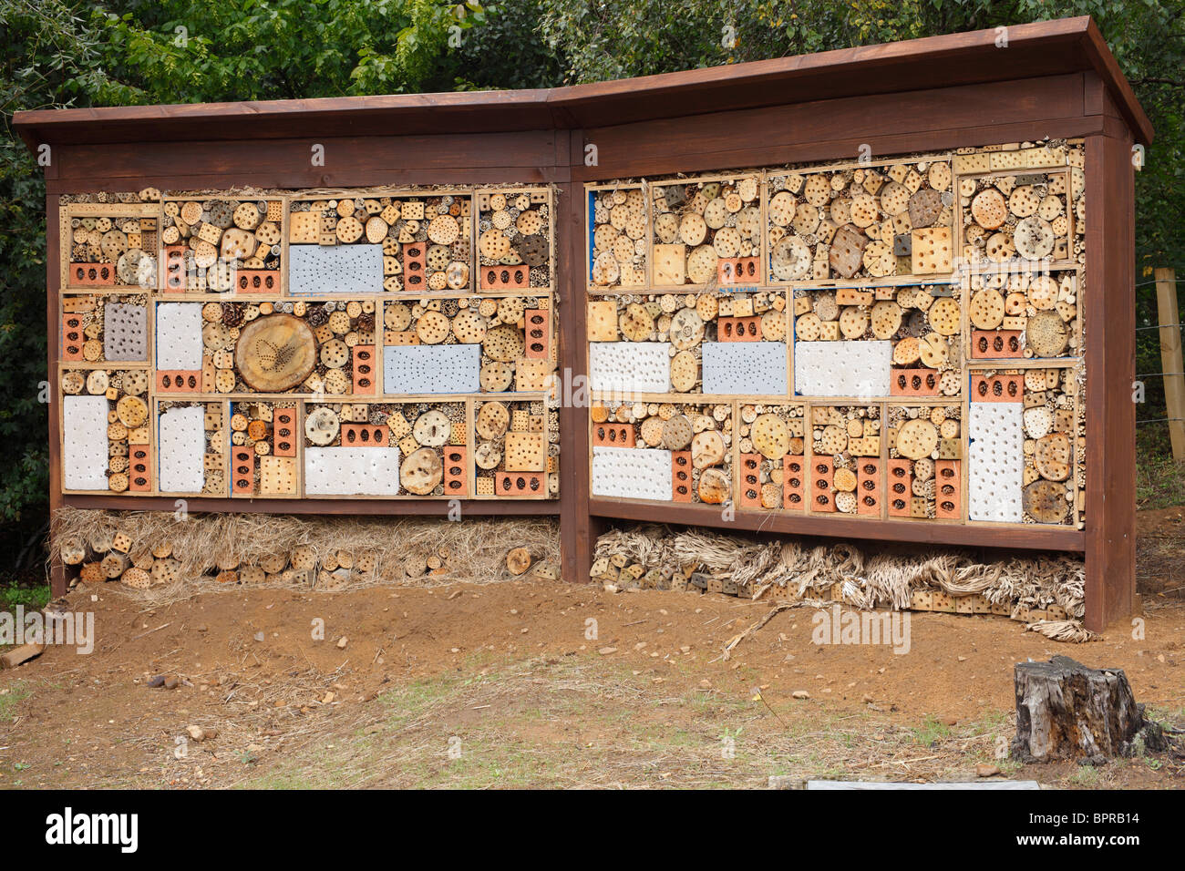 wall built in an attempt to build the worlds largest bee home stock rh alamy com bee homework bee homes south molton