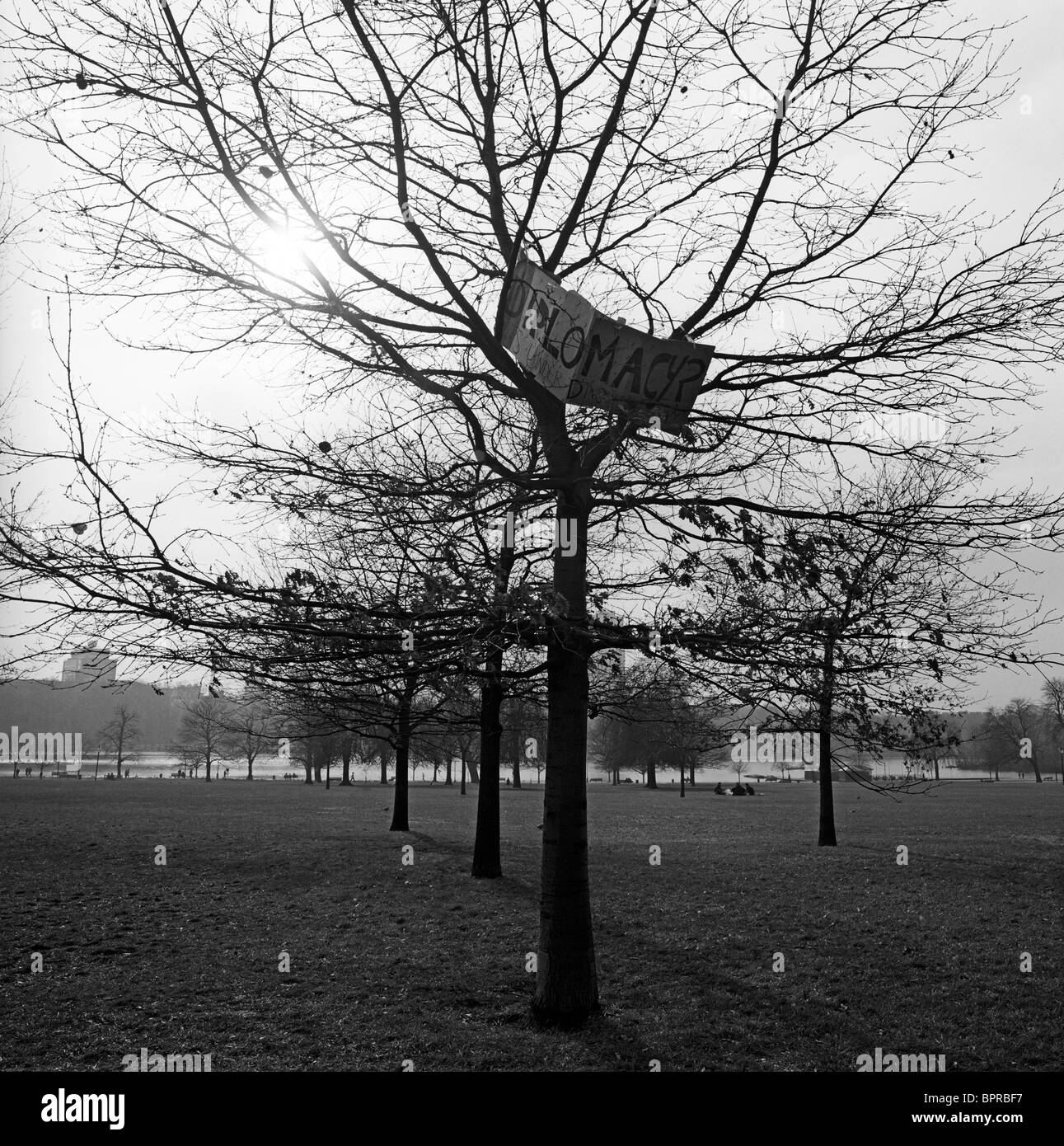 The work Diplomacy written on a makeshift sign has been left high up on a tree in Hyde Park after an anti-war protest. - Stock Image