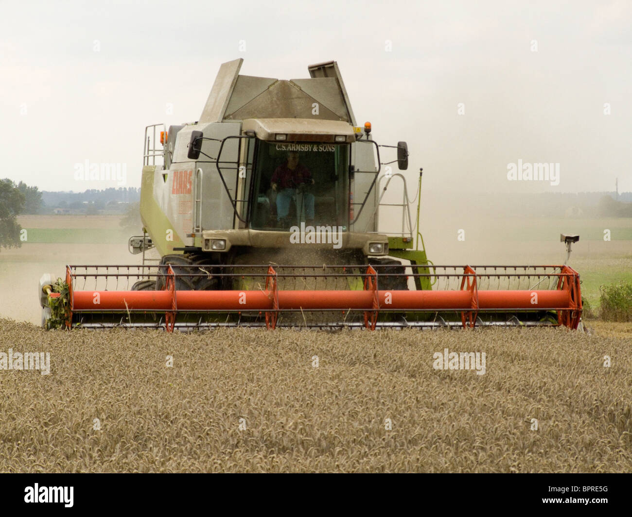 Claas Lexion 480 combine harvester harvesting wheat in a Norfolk field on a bright August day - Stock Image