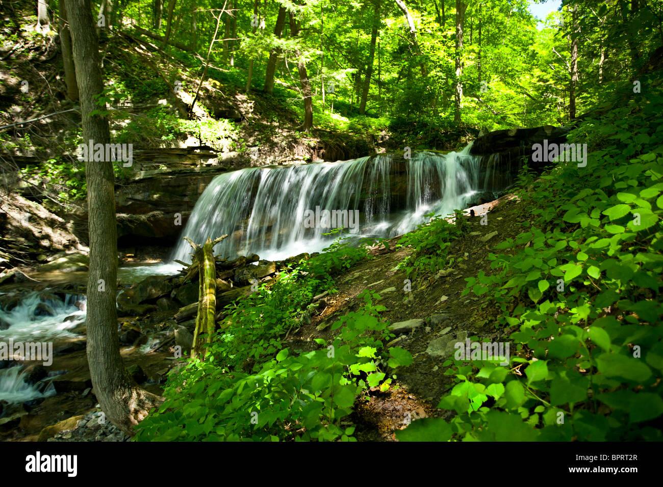 Waterfall Niagara Escarpment Ontario Canada - Stock Image