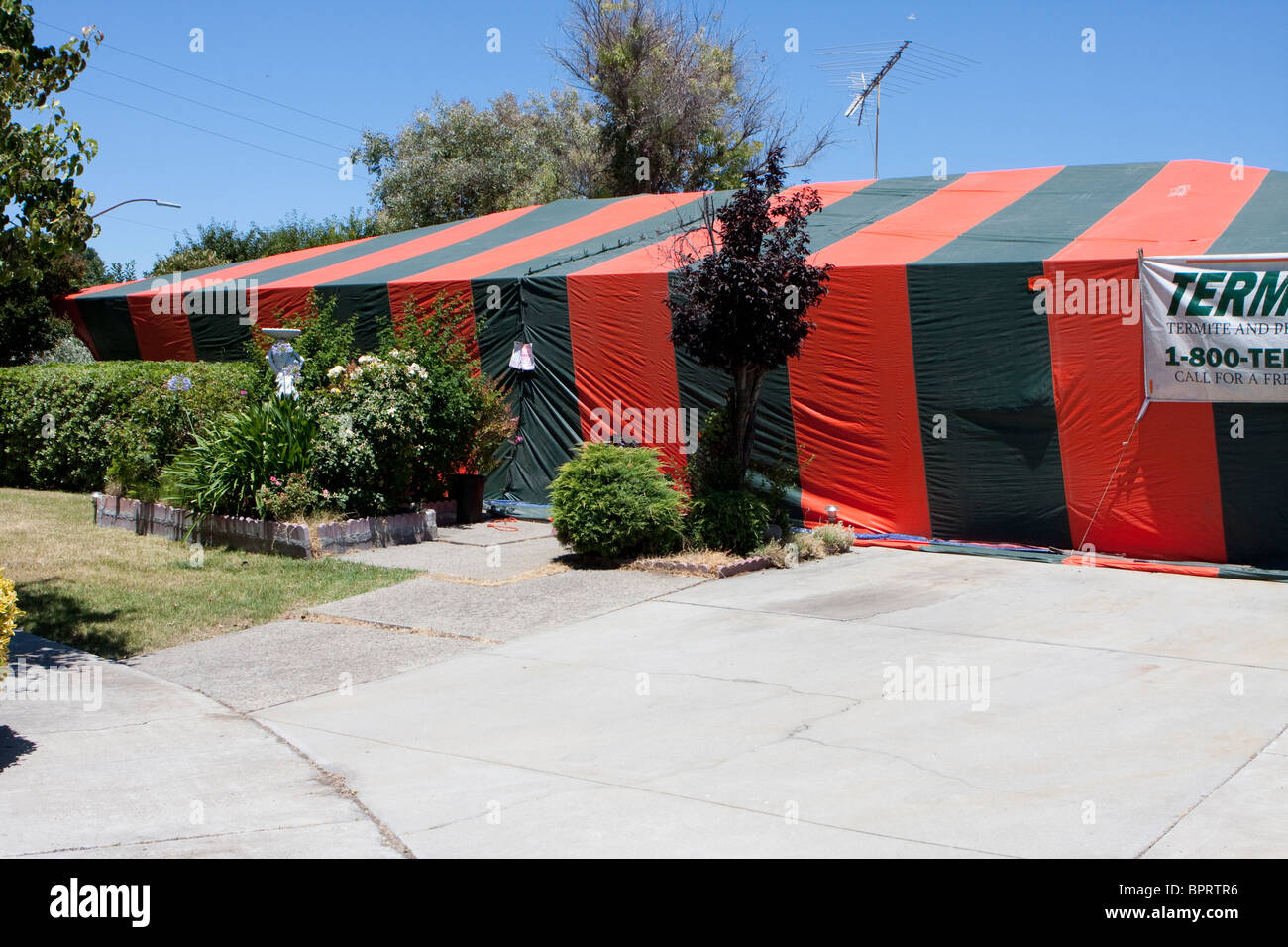 An orange and green termite tent covers a home in San Jose, California. Inside a poison gas kills the termites. - Stock Image