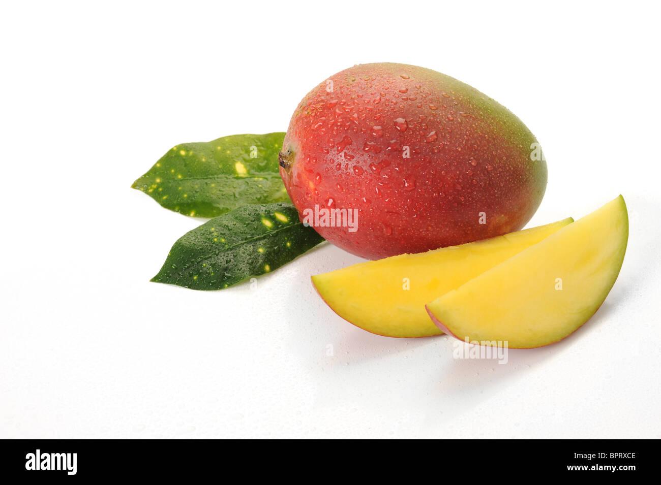 Image of mango fruit studio isolated on white background - Stock Image