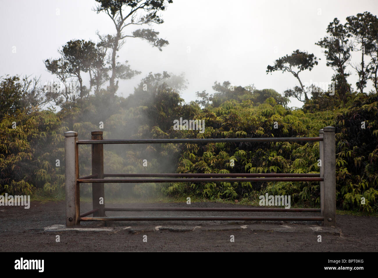 Steam vents, Hawaii Volcanoes National Park, The Big Island, Hawaii, United States of America - Stock Image
