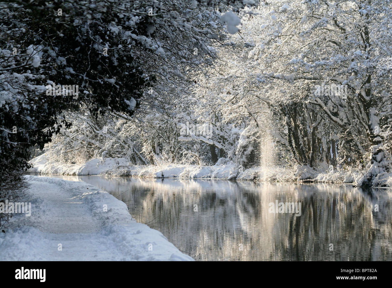 Winter on the Wey Navigation Canal, Surrey - Stock Image