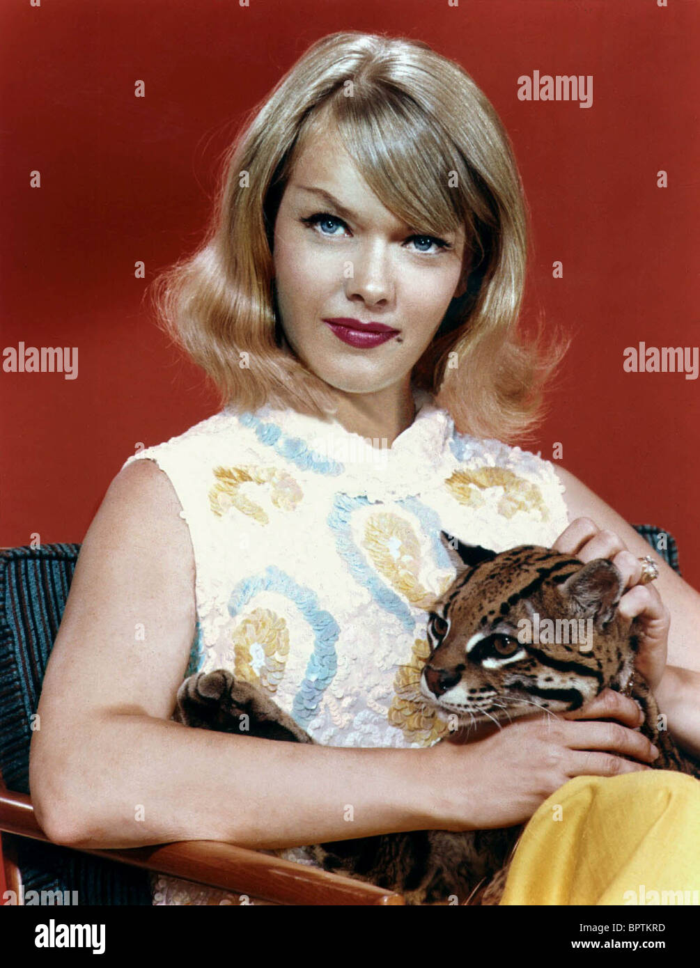 ANNE FRANCIS ACTRESS (1956) - Stock Image