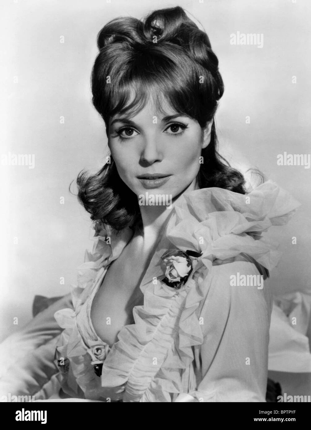 ELSA MARTINELLI ACTRESS (1963) - Stock Image