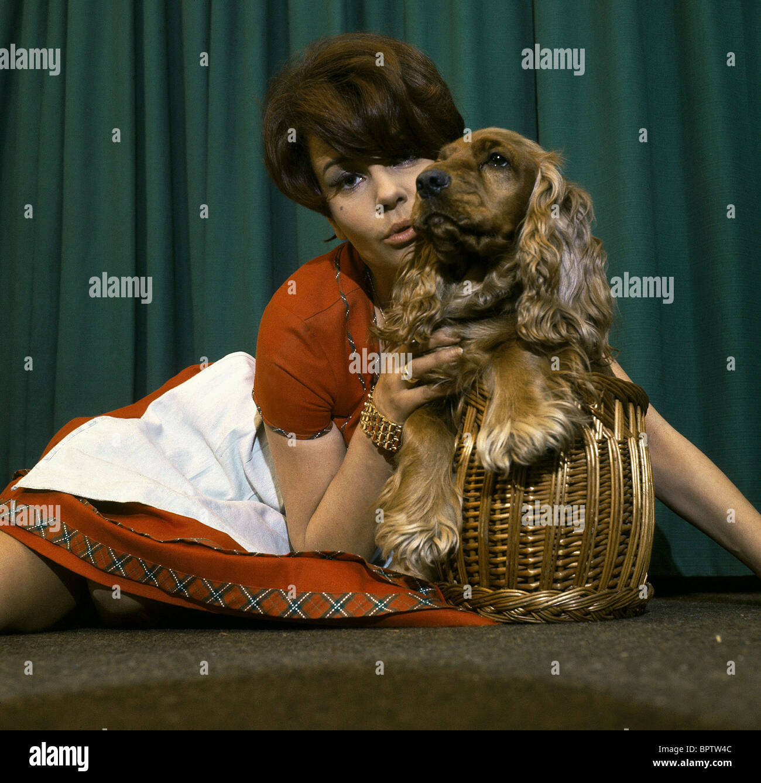 CORNY COLLINS & DOG ACTRESS (1974) - Stock Image