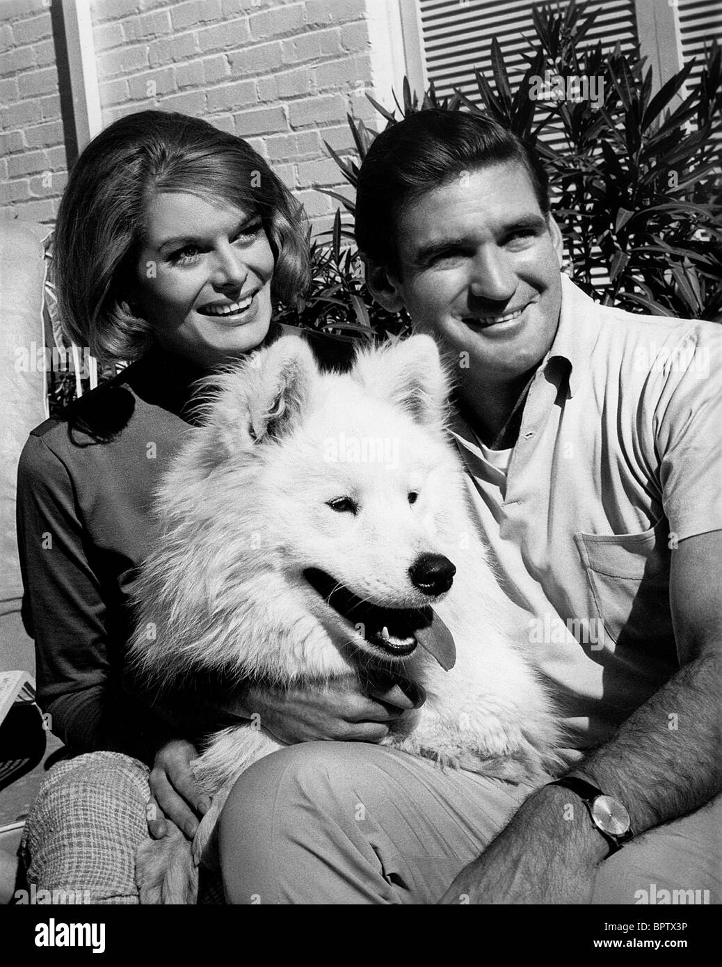 MARY HILEM ROD TAYLOR & DOG ACTOR WITH WIFE (1964) - Stock Image