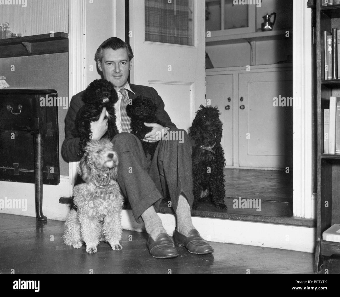 HUGH WILLIAMS WITH DOGS ACTOR (1948) - Stock Image