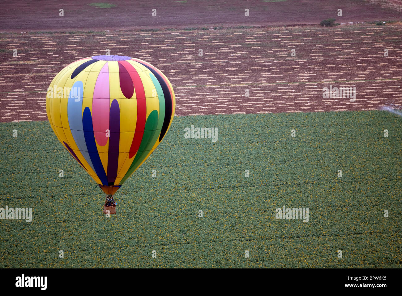 A hot air balloon above fields landscape - Stock Image