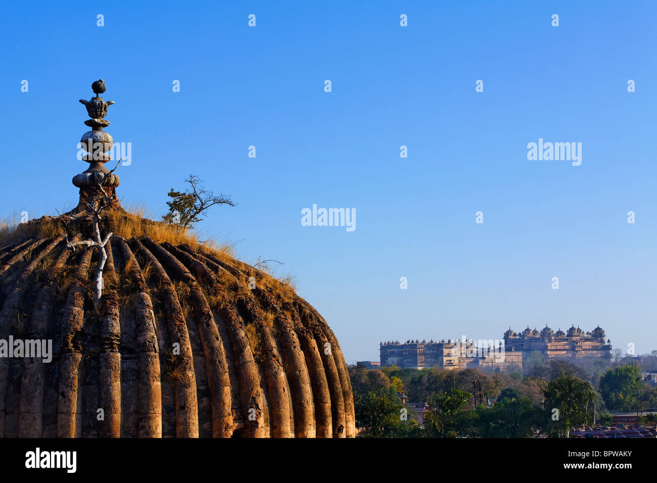 Dome of a cenotaph with the Raj Mahal in the background, Orchha, Madhya Pradesh, India - Stock Image