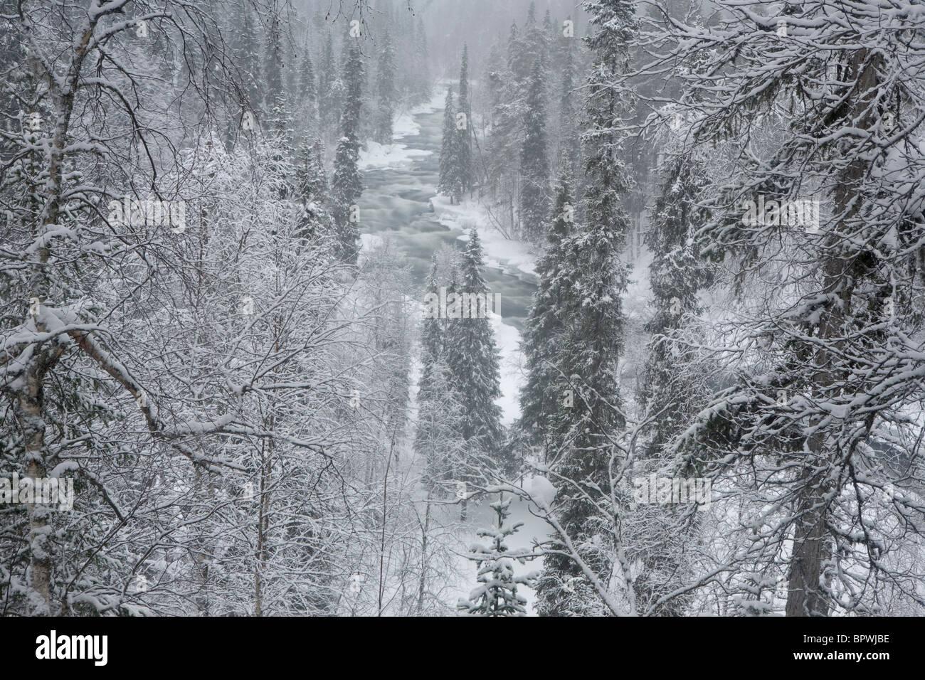 The Kitka River in Oulanka National Park, Finland. - Stock Image