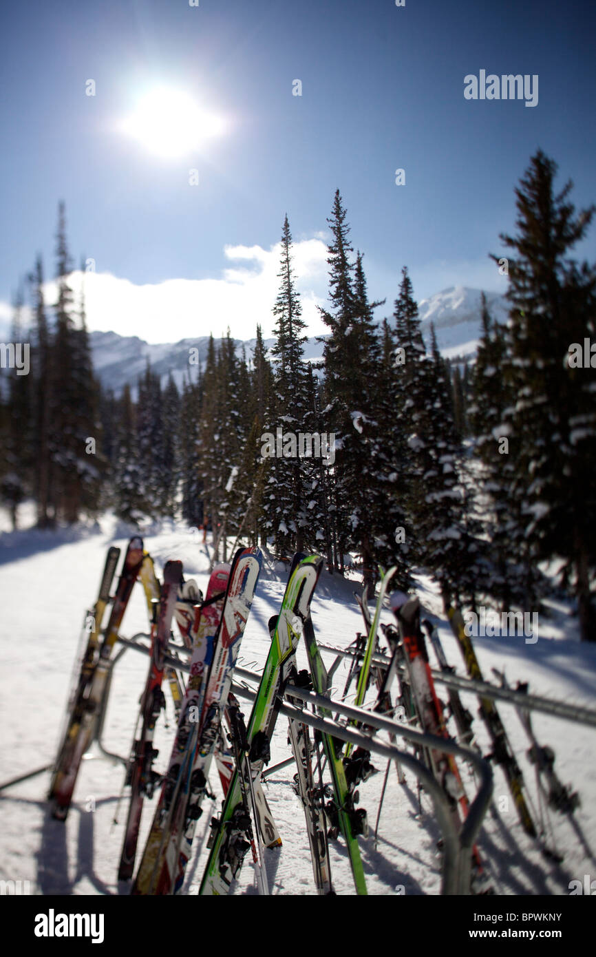 Skis all racked up at Alta Ski Resort. - Stock Image