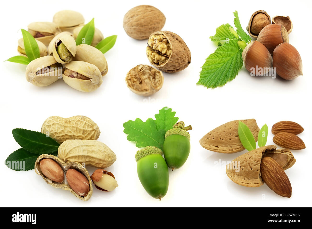 Full-size composite photo of various isolated nuts with realistic drop shadows for depth on white background. - Stock Image