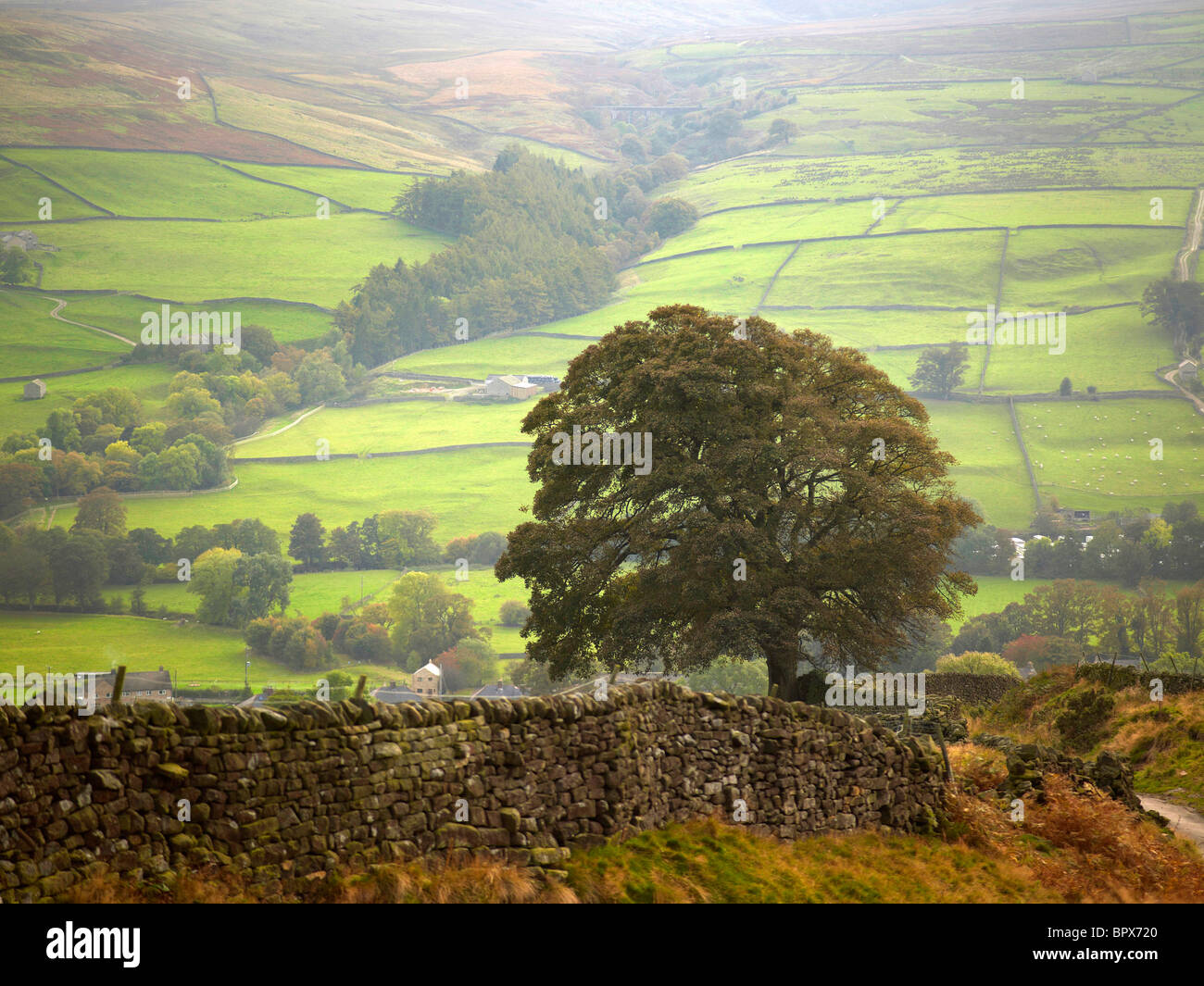 Nidderdale above Lofthouse, Yorkshire Dales, Northern England - Stock Image