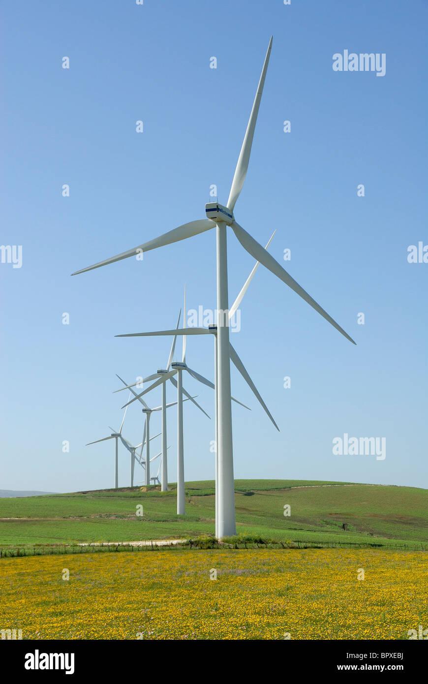 Wind farm Ecological power Spain Wild flowers wind energy industry - Stock Image