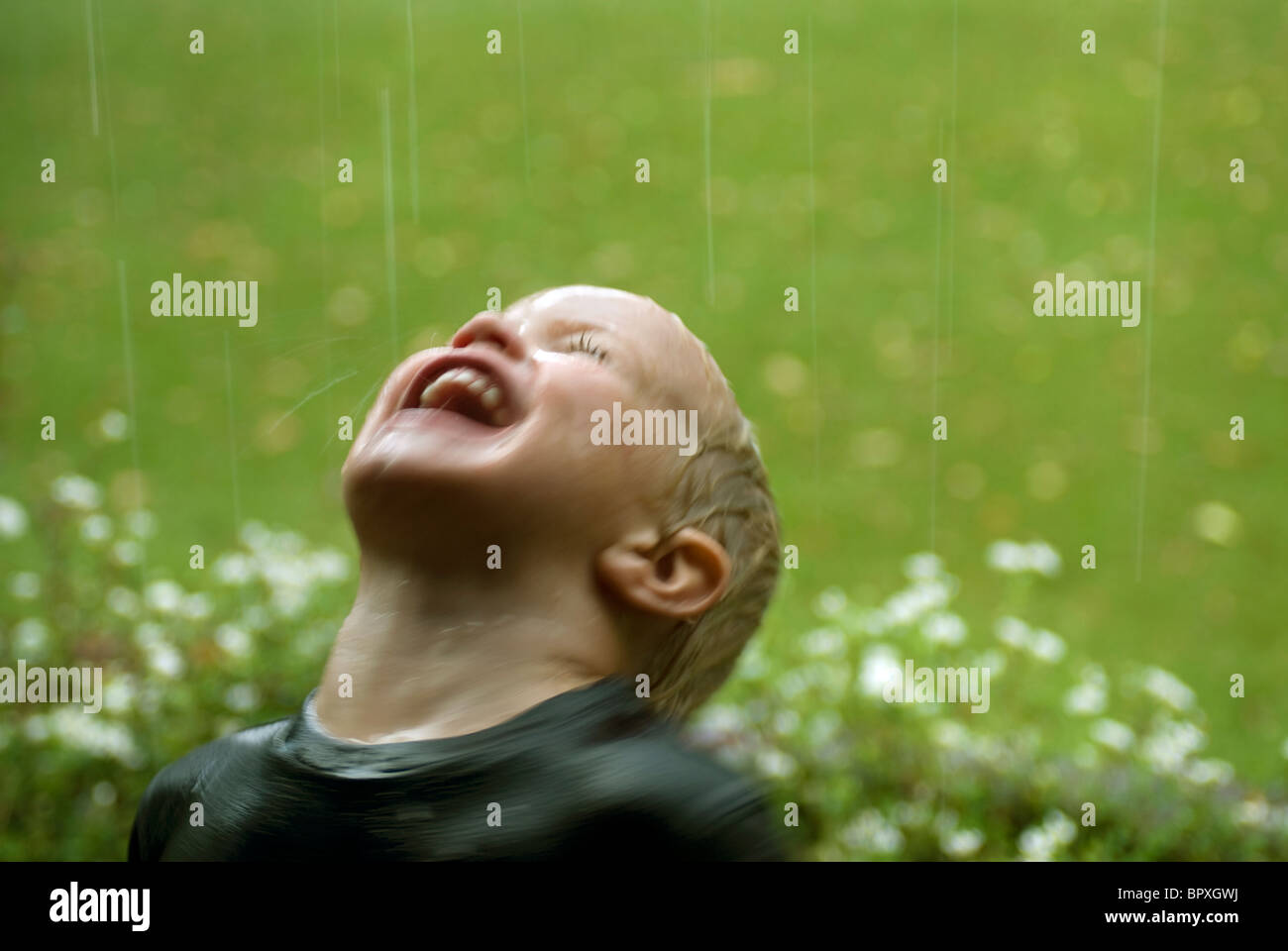 During a storm baby loves drinking rain water in the garden which is clean, pure, cool and refreshing. - Stock Image