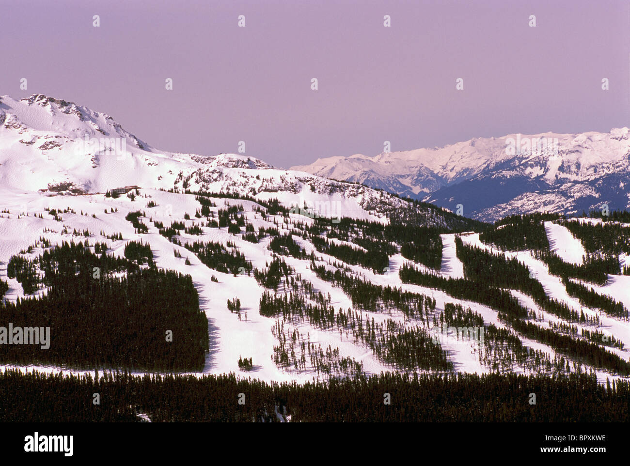 Whistler Ski Resort, BC, British Columbia, Canada - Ski Runs on Whistler Mountain, Winter - Stock Image
