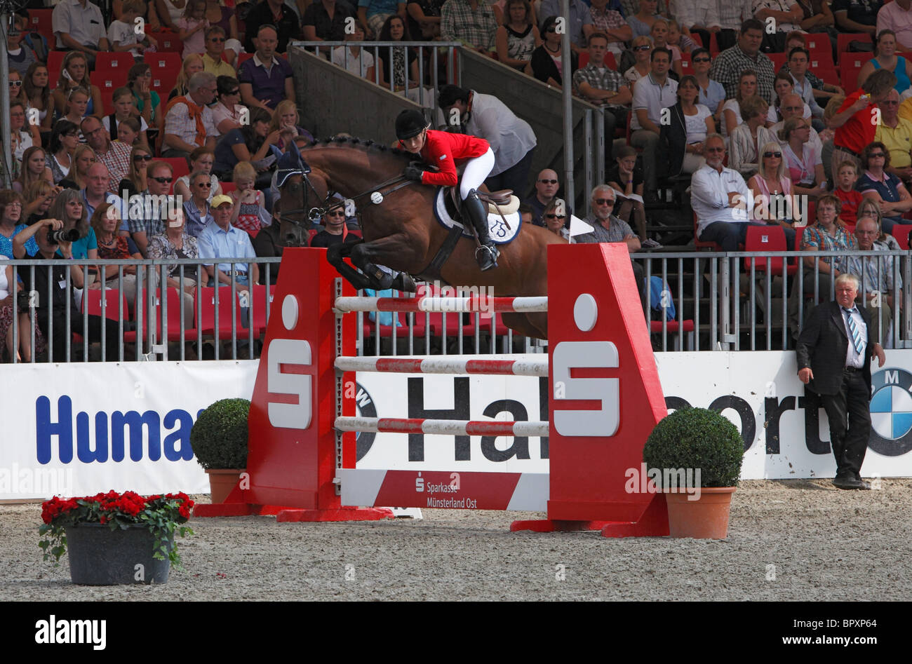 equestrian sports, German championships jumping and dressage 2010 in Muenster, Muensterland, North Rhine-Westphalia, Stock Photo