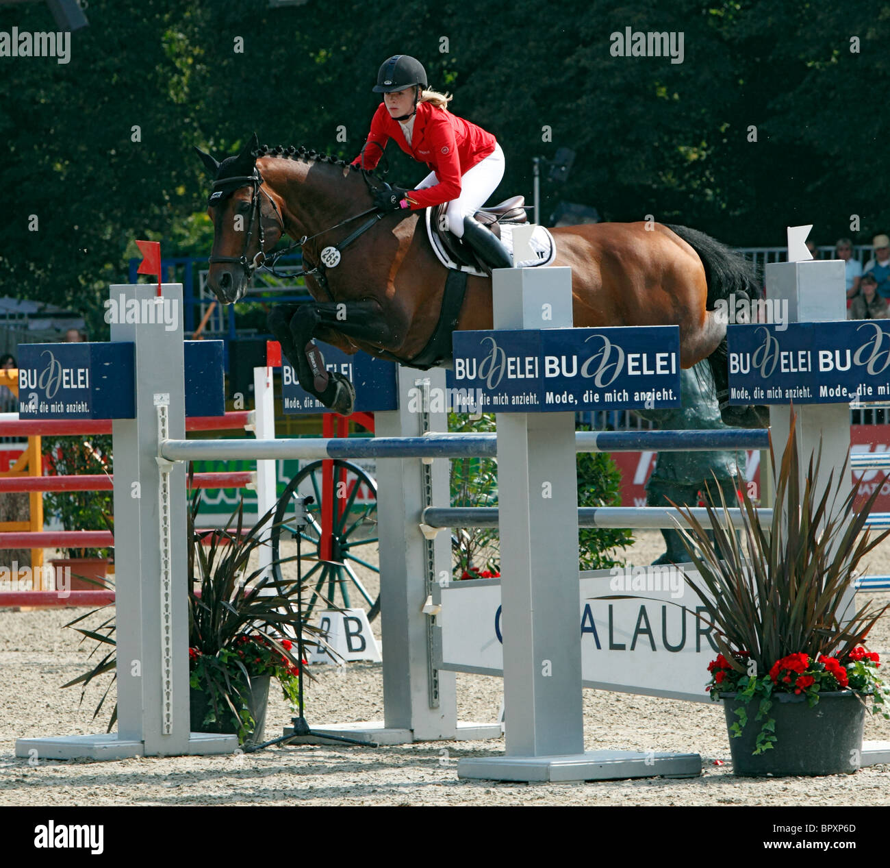 equestrian sports, German championships jumping and dressage 2010 in Muenster, Muensterland, North Rhine-Westphalia, - Stock Image