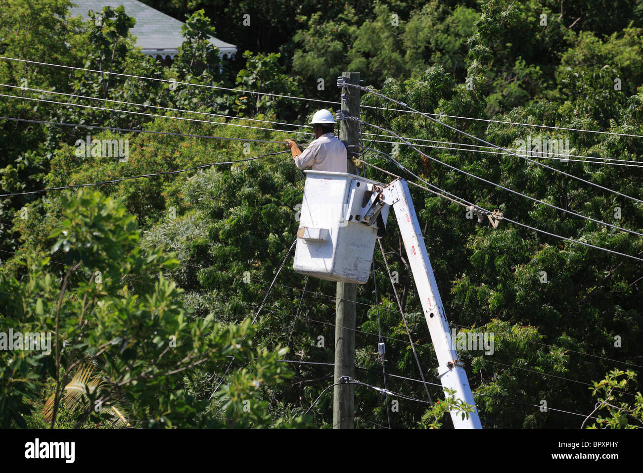 Repairing power transmission electricity supply - Stock Image