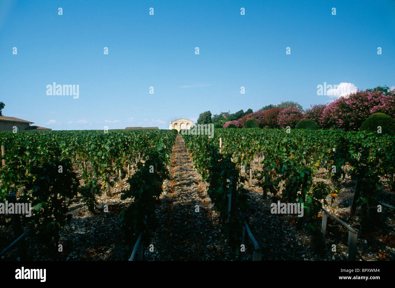 Pauillac France Chateau Mouton Rothschild & Vineyard - Stock Image