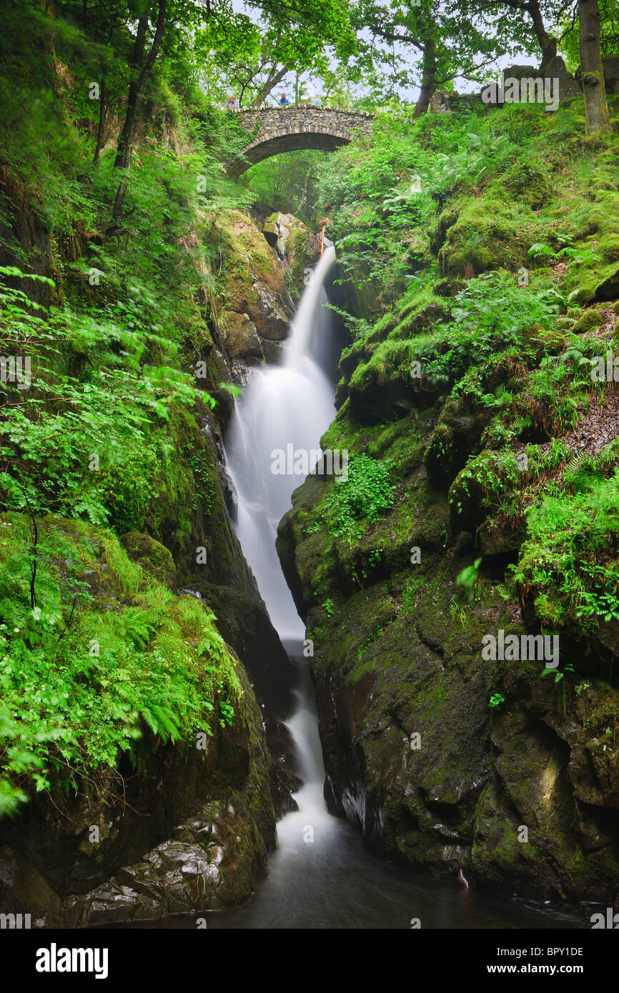Aira Falls, Lake District, England - Stock Image