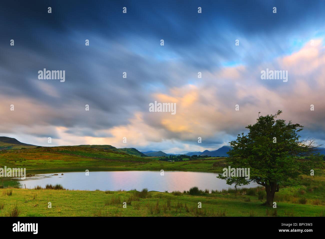 Tewit Tarn at sunrise near Keswick, Lake District, Cumbria, England. - Stock Image