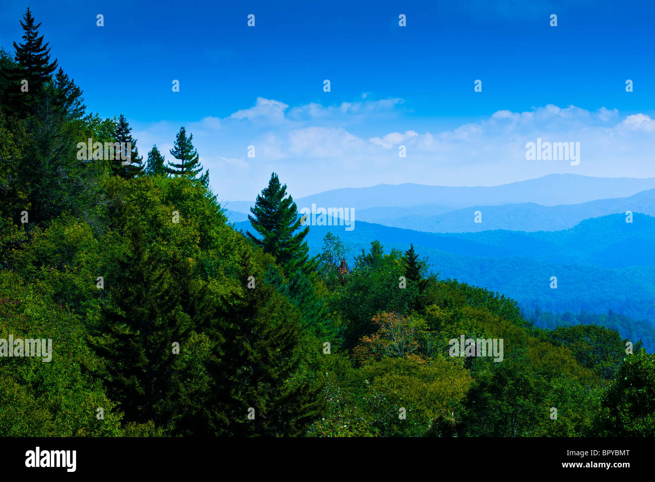Great Smoky Mountains National Park - Stock Image
