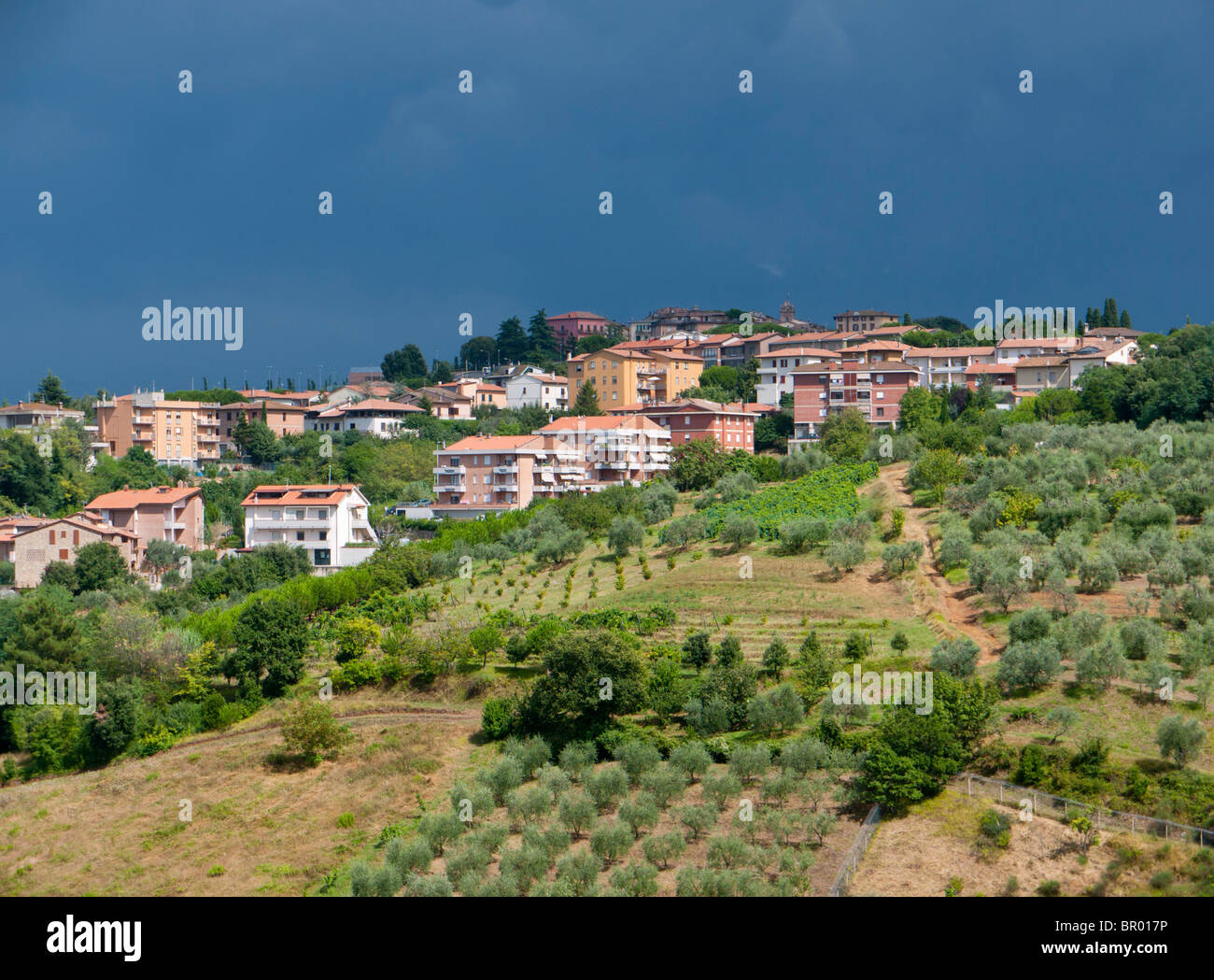 Thunderstorm clouds above a cultivated landscape with olive trees at Montaione in Tuscany / Italy. - Stock Image