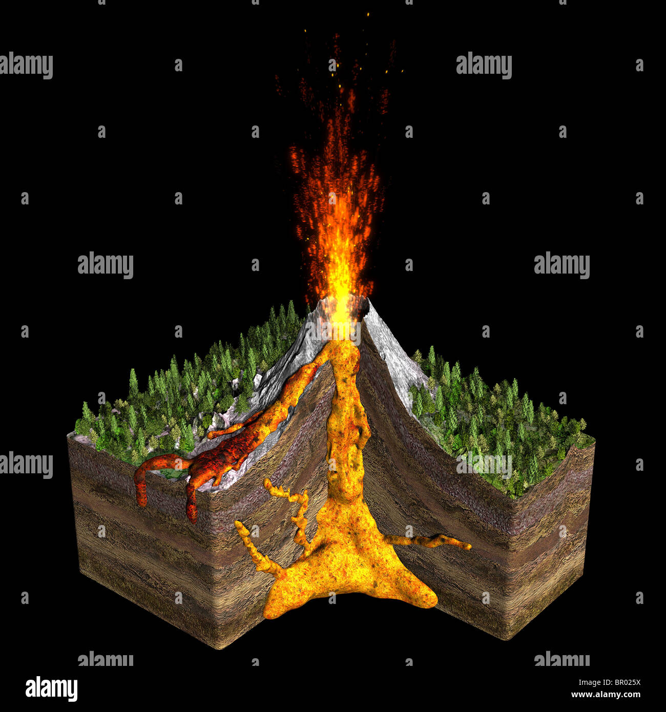 Illustration of a volcano spitting fire. Showing a cross section of the earth with magma chambers. - Stock Image