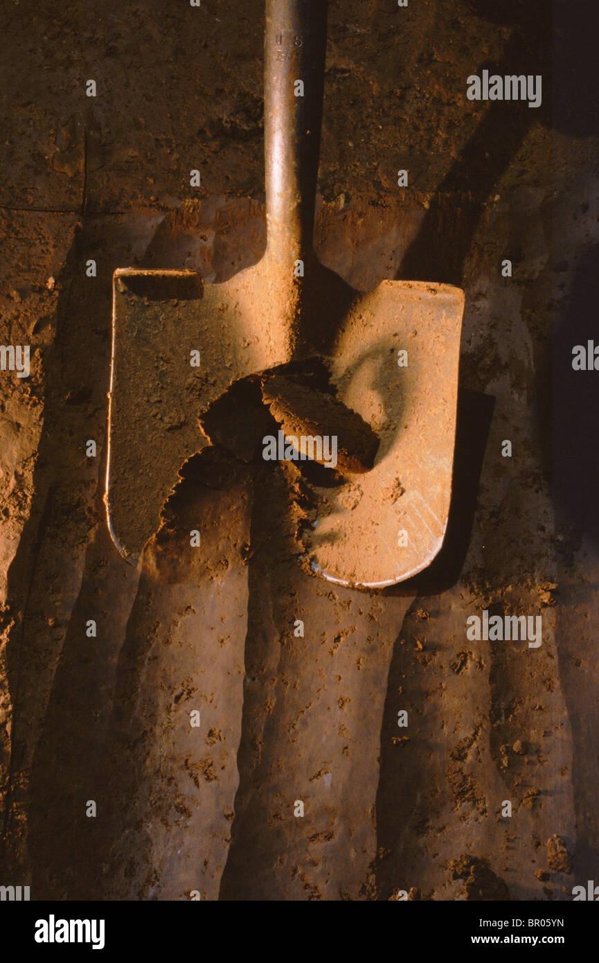 An archaeologists shovel digging at Big Eddy, MO. - Stock Image