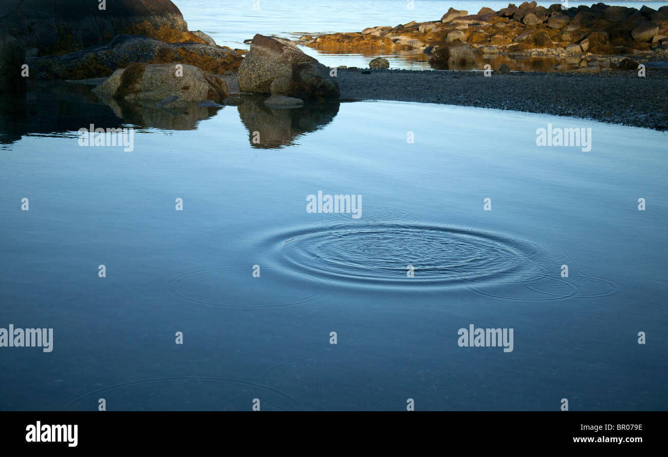 water lagoon with rings of waves radiate away from thrown pebble - Stock Image