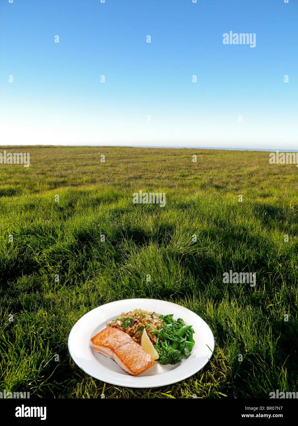 fresh plate of dinner on grass outside - Stock Image